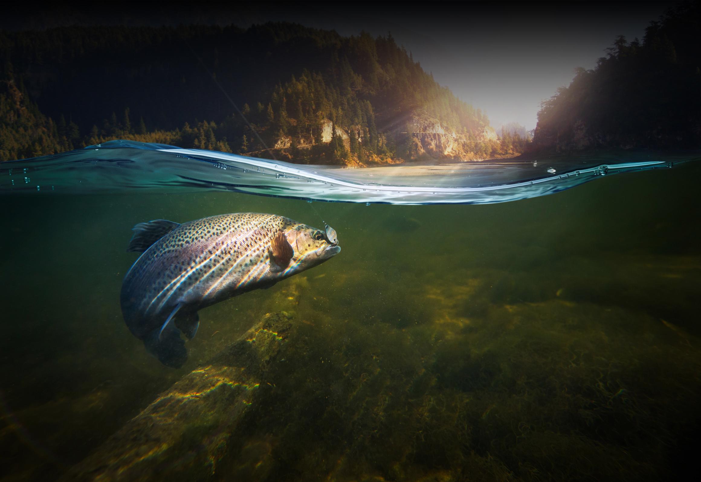 Rainbow Kayaks Fishing - Fishing